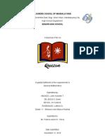 BUSINESS-PLAN-FINALLLL.docx