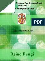 Microbiol Industrial- Hongos