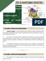 AULA 2 - BOTÂNICA GERAL .pdf