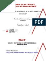 Slides - REANP AEE