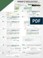 Paso a Paso Servicio PQSR.pdf