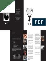 Flyer CERF.pdf