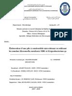 Elaboration d'une pile à combustible microbienne en utilisant les souches Shewanella oneidensis MR1 et Exiguobacterium sp. (1)