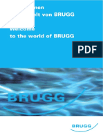 1.2_Welcome to Brugg's World