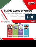 Trabajo Seguro de Alturas - Alejandra
