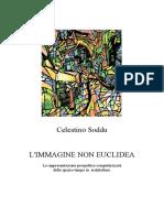 Immagine_non_Euclidea_Not_Euclidean_Imag.pdf