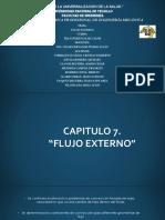 capitulo 7.pdf-VASQUEZ BECERRA ANDY.pdf