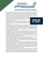 ANALISIS DETERMINANTES EN COLOMBIA