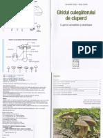 Ghidul culegatorului de ciuperci - Locsmandi Csaba.pdf
