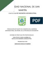 96337730-Planta-Procesadora-de-Palmito-en-Conserva.pdf