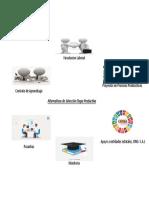 Infografia Proyeccion de eleccion alternativa productiva