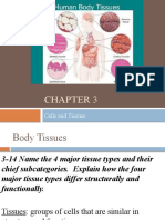 Ch._3_Notes_-_Epitheal_Tissues.pptx