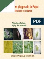 Principales Plagas De La Papa.pdf