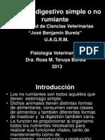 sistema digestivo simple no rumiante