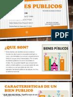 BIENES PUBLICOS-4