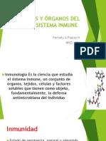 Unidad I organos celulas y tejidos  B 2019