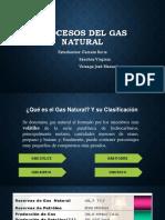 PROC.GN, Liquidos, tratam..pdf