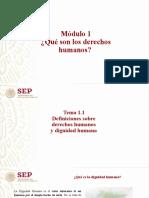 1.1 Definiciones sobre derechos humanos y dignidad humana (1).pptx