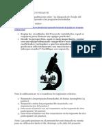 Foros Formativo 3.docx