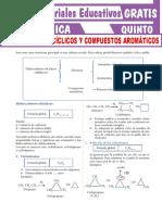 Hidrocarburos-Cíclicos-y-Compuestos-Aromáticos-Para-Quinto-Grado-de-Secundaria
