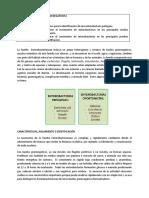 PRÁCTICA VIII - 2020- I