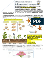 BIOLOGIA SEPTIMOseptember2020.docx