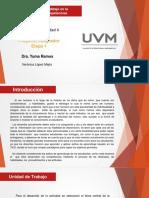 Actividad 4-Proyecto Integrador-Etapa 1-VLM