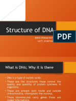 Structure of DNA to be uploaded