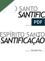 Palestra 3 - Espírito Santo e Santificação