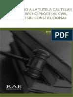 169 - DERECHO TUTELA CAUTELAR PROCESO CIVIL Y CONSTITUCIONAL - Junior Benites R. - RAE 1