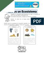 Ecosistema y habitat