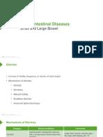 Slides_SmallAndLargeIntestineDiseases_GastrointestinalPathology.pdf