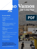 Boletín_LimaSur2019.pdf