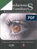 CONSTELACIONES FAMILIARES FUNDAMENTACION SISTEMATICA DE BERT HELLINGUER - CARMEN VARGAS MONICA GIRALDO.pdf