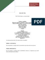 FORMATO HOJA DE VIDA POR LOGROS Y COMPETENCIAS 2013
