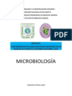 proyectoo microo.docx