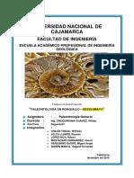Informe Ronquillo-Sexenmayo