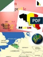 Belgium final