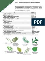 Clave_dicotómica_para_identificar_árboles_1.pdf