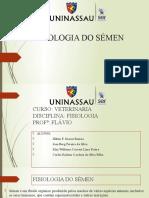 FISIOLOGIA DO SÉMEN COM IMAGENS
