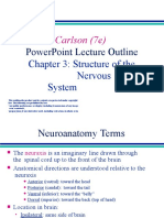 LESSON-3 STRUCTURE OF THE NERVOUS SYSTEM