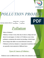 POLLUTION PROJECT tsira 517