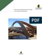 diseno-y-calculo-de-puentes - corregido 1.docx