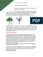 Aparato Psíquico- primera y segunda tópica .docx