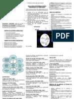 Folleto-ISO-9001-2008