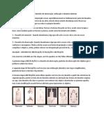 texto o desenho de observação ,estilização e desenho abstrato