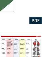 Anatomia Resumen Musculos Miembro Superior