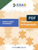 linguagem e programação