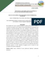 ARTICULO DEL CACAO2