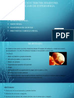 exposicion 3cer semestre enfermeria cris (3).pptx